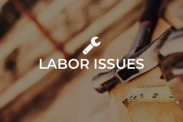 labor-issues-card.png